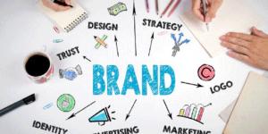 как стать брендом в млм
